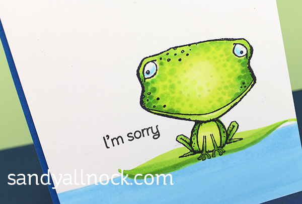 Sandy Allnock Indecisive Frog2