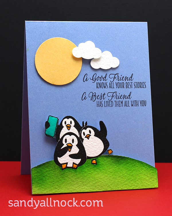 Sandy Allnock - TCP penguins