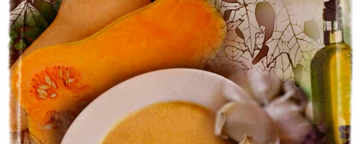 sandy hibbard creative squash soup recipe