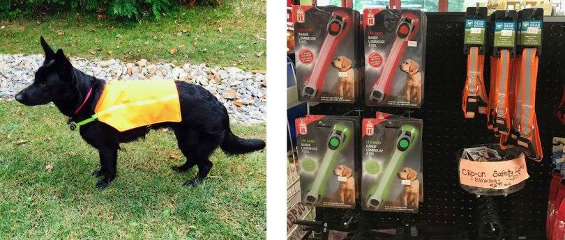 dog-reflective-vest-and-lights