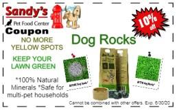 Dog Rocks 6-20