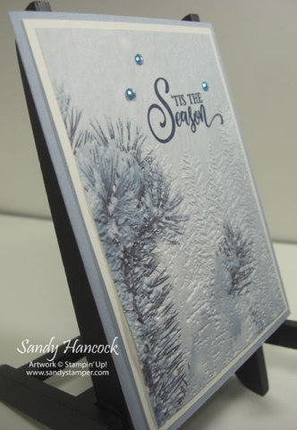 Feels Like Frost with the Evergreen Forest 3D Embossing Folder