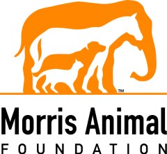 K9 Cancer Walk Benefiting Morris Animal Foundation