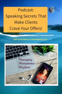 presentations/clients/podcast/sanespaces.com