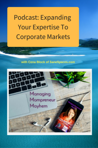Expanding your expertise to corporate markets | Podcast | SaneSpaces.com