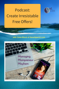 Create Irresistible Free Offers|Podcast|SaneSpaces.com