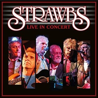 Strawbs – Live in Concert (2020)