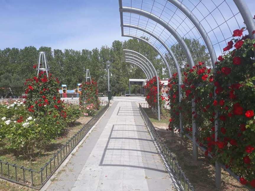 Se reanudan los trabajos de jardinería, interrumpidos por el COVID-19