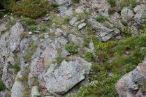 2009北岳026