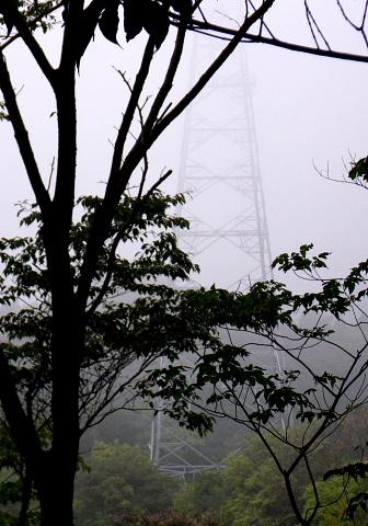 この鉄塔の巡視路が近道になった。