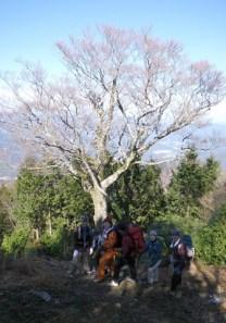 北総門山(704m)・総門山(948m)