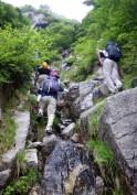 最後の登りはじめじめしている。