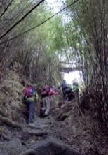 ⑥竹林の岩道を登る