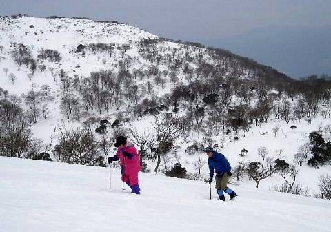 2009年1月定例山行A  藤原岳(鈴鹿北部)