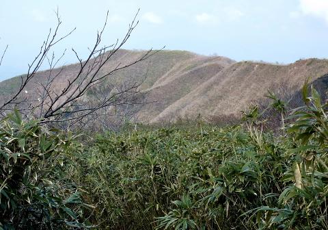 2010年5月1日 金糞岳(1317m)白倉岳(1270m)(滋賀県浅井町)