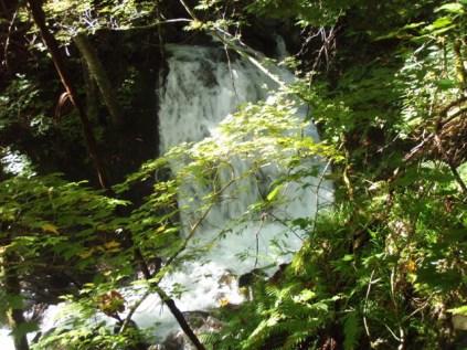 34‐岩魚留の滝、水量が多く感じる