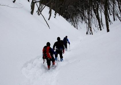 白瀬峠から真ノ谷への直滑降。