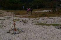 山頂駅跡の植林、花崗岩砂で広葉樹は難しそう