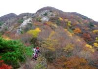 2010年11月13日 定例山行 釈迦ヶ岳中尾根新道