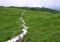 ⑩何処までも長い木道歩きは草原のハイジになった様