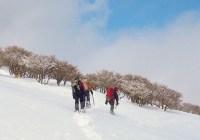 2011年1月21日(土) 鈴鹿 竜ヶ岳 自主山行