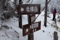 目指す北横岳