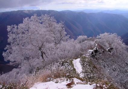 17 樹氷の登山道③