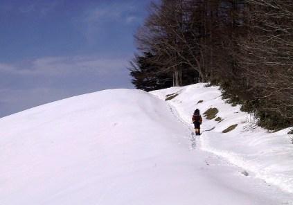 09 雪は多いが,締まって歩きやすい。
