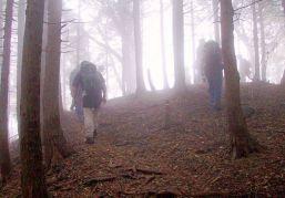07 栗の木岳分岐からはあの世のよう。