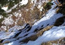 03.隣の中山尾根下部岩壁