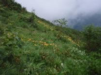 笠ヶ岳 (10)
