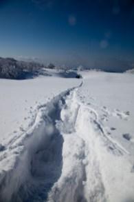 2012年01月29日御池岳 (76)