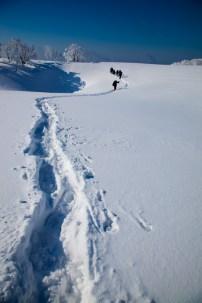 2012年01月29日御池岳 (70)