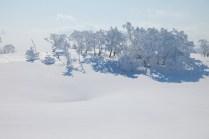 2012年01月29日御池岳 (62)