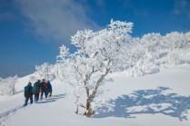 2012年01月29日御池岳 (60)