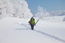 2012年01月29日御池岳 (58)