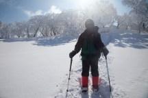 2012年01月29日御池岳 (36)