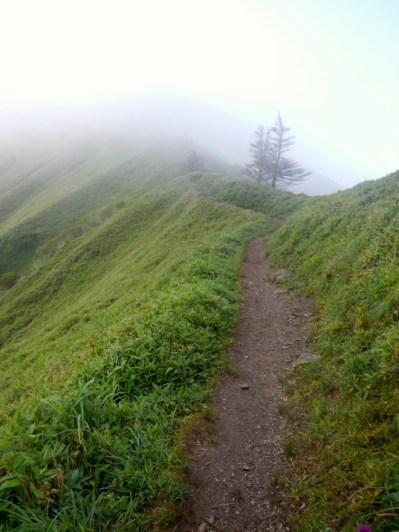 剣山山頂から、がっつり下って、ガッツリ登って次郎笈です