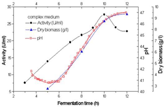 [ihwal] uji aktifitas dari enzim lipase