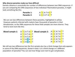 For more information on genetic distance, click image. Credit: Roberto Amato