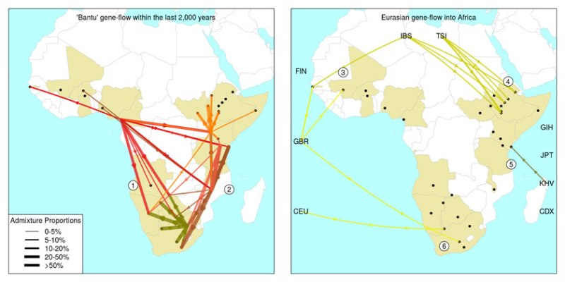 AfricaAdmixtureEventsMapEurasiaBantu_840-mid-text
