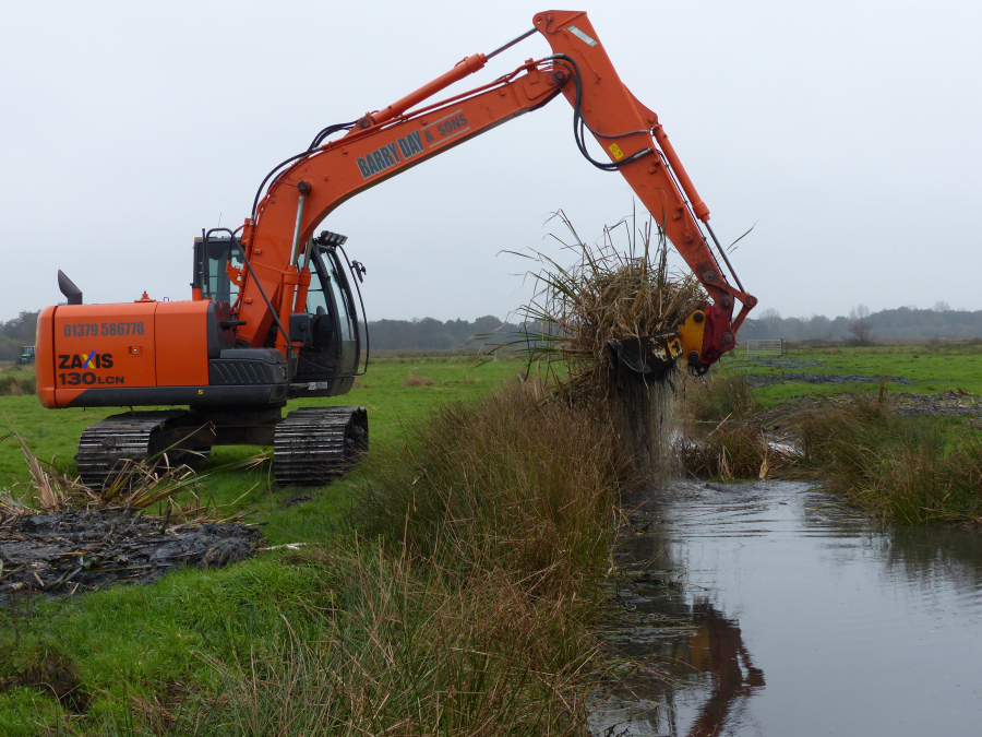 Clearing a fen ditch - home to the Fen Raft Spider (one of the 25 Genomes we are sequencing)
