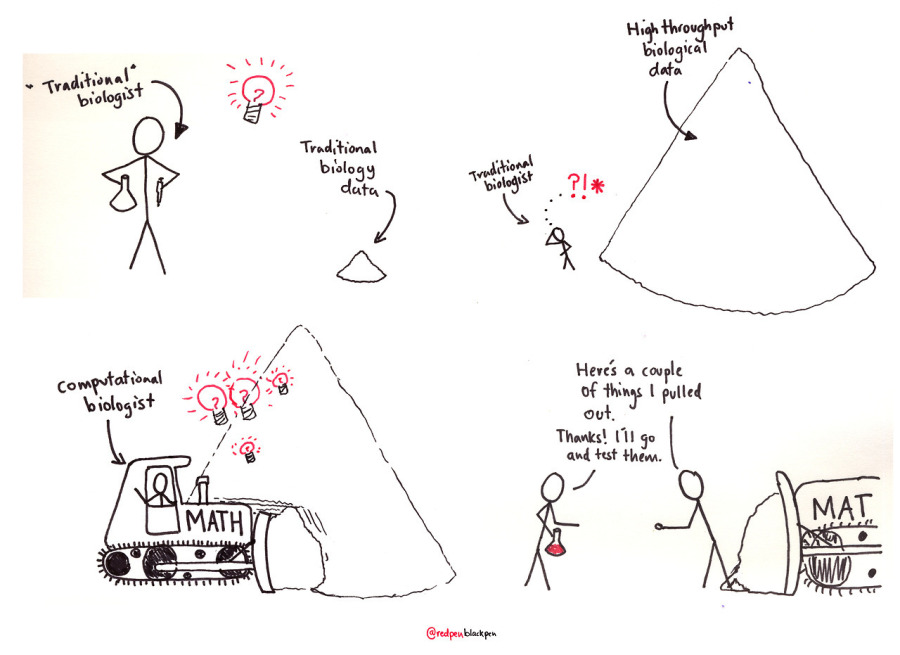 How traditional biologists and computer biologists work together. #CartoonYourScience by @redpen/blackpen https://twitter.com/redpenblackpen