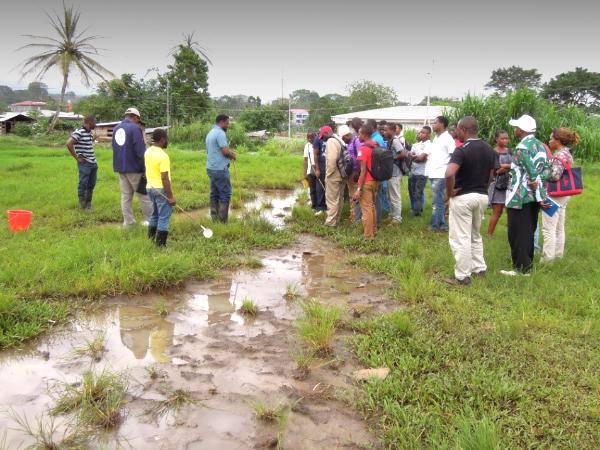 Training session in sampling mosquito larvae for community volunteers. Photo credit: Prosper Chaki
