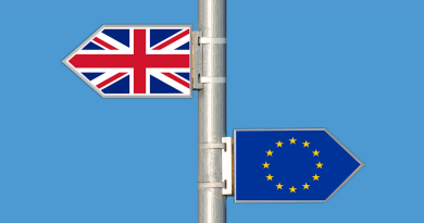 Developing a view on Brexit, by Sarion Bowers, Policy Lead at the Wellcome Sanger Institute
