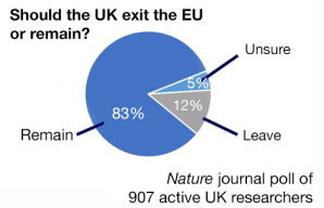 Nature journal poll of active UK researchers showing that the vast majority supported remain in the EU