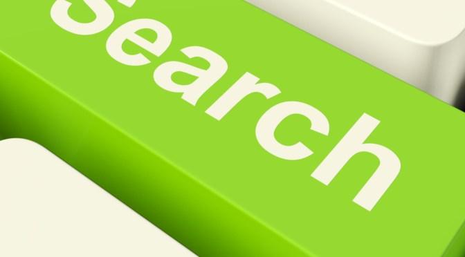 Easily Add Search Box On Your WordPress Navigation Menu Bar