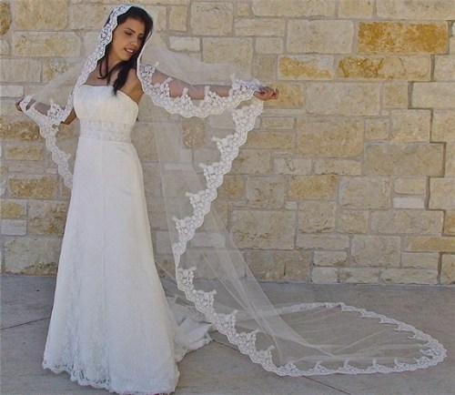 mantilla veil with beaded lace in cathedral length