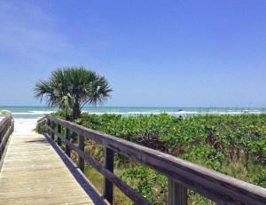 Donax Beach Access