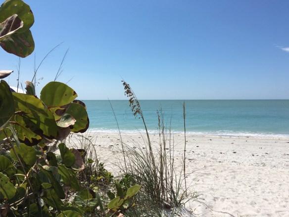 West Wind Beach 03-17-17